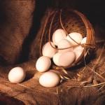 a1a760358e00484d8bf535dedc63275f1 150x150 - Сонник яйца и их символичность во сне