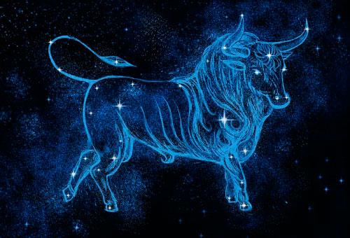 гороскоп на год для тельца