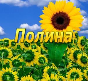 Tayna imeni Polina foto 300x277 Тайна имени Полина