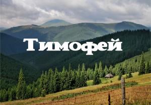 Tayna imeni Timofey 300x210 Тайна имени Тимофей