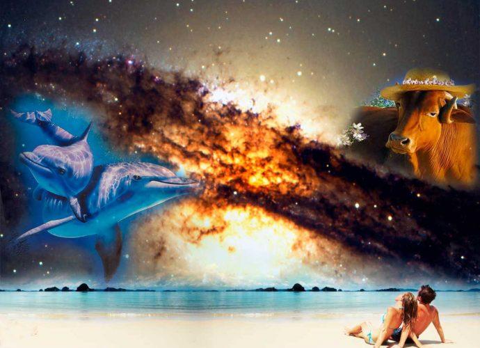 Рыбы совместимость с другими знаками — астрология онлайн
